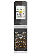 Sony Ericsson TM506 – технические характеристики
